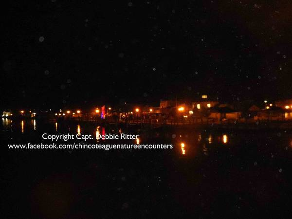 Photograph - Orbs Over The Bay by Captain Debbie Ritter