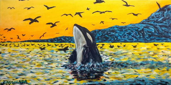 Blackfish Painting - Orca by Robbie Potter