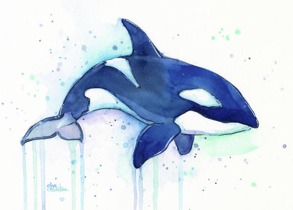 Whimsical Wall Art - Painting - Orca Whale Watercolor Killer Whale Facing Right by Olga Shvartsur