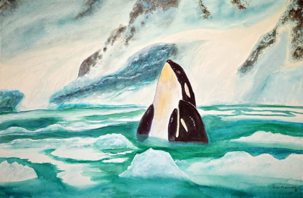 Blackfish Wall Art - Painting - Orcas Arctic Ice by Ken Figurski