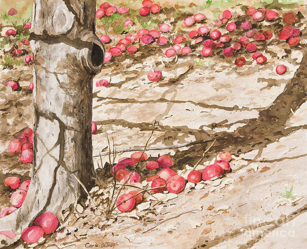 Orchard Afternoon Art Print by Carla Dabney
