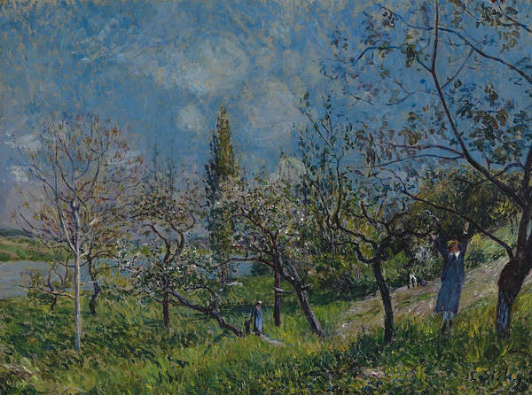 Painting - Orchard In Spring by Alfred Sisley