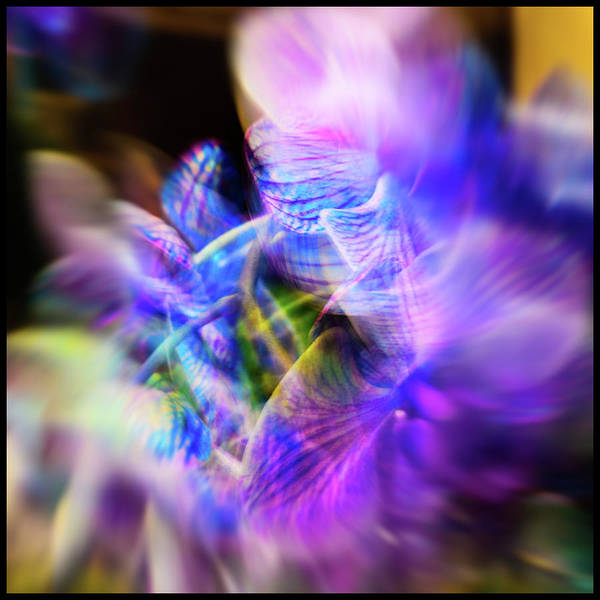 Photograph - Orchid Abstract by Stewart Helberg