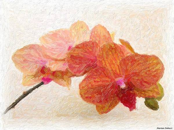 Painting - Orchid Beauty by Marian Palucci-Lonzetta