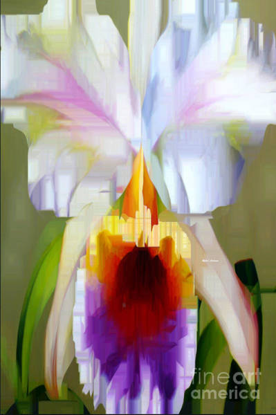 Digital Art - Orchid Cattleya by Rafael Salazar