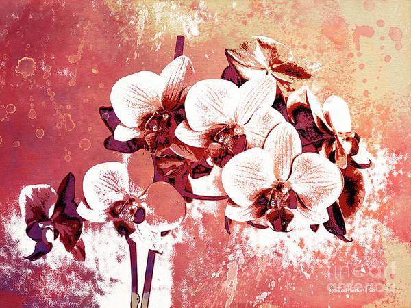 Digital Art - Orchid Garden by Jutta Maria Pusl