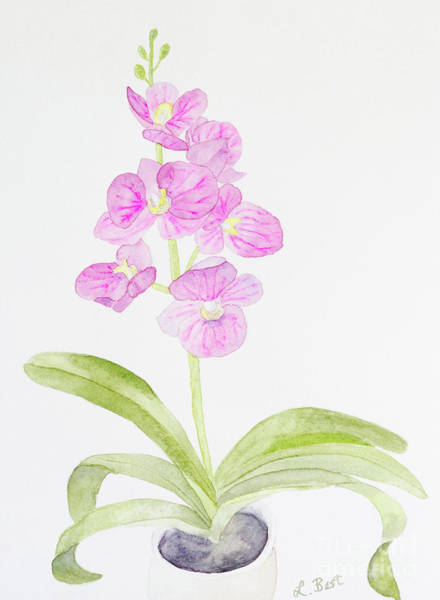 Painting - Orchid Gift by Laurel Best
