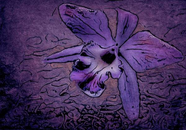 Wall Art - Photograph - Orchid In Purple by Ches Black