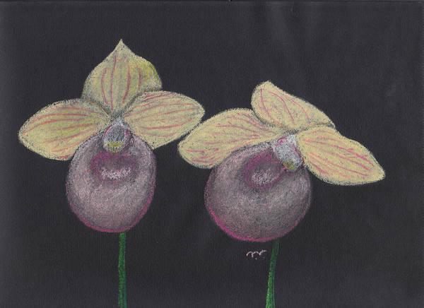 Pastel - Orchid-paphiopedilum Fanaticum by M Valeriano