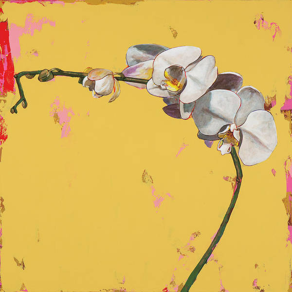 Wall Art - Painting - Orchids #3 by David Palmer