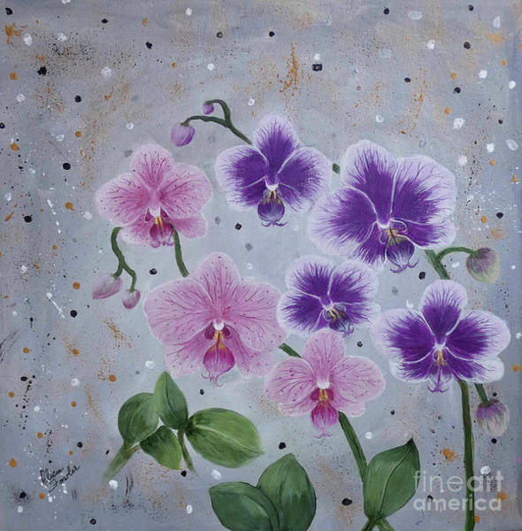 Orchids Galore Art Print
