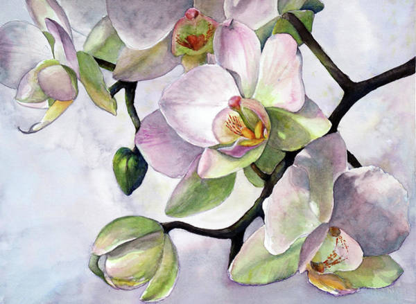 Wall Art - Painting - Orchids In The Morning by Susy Soulies