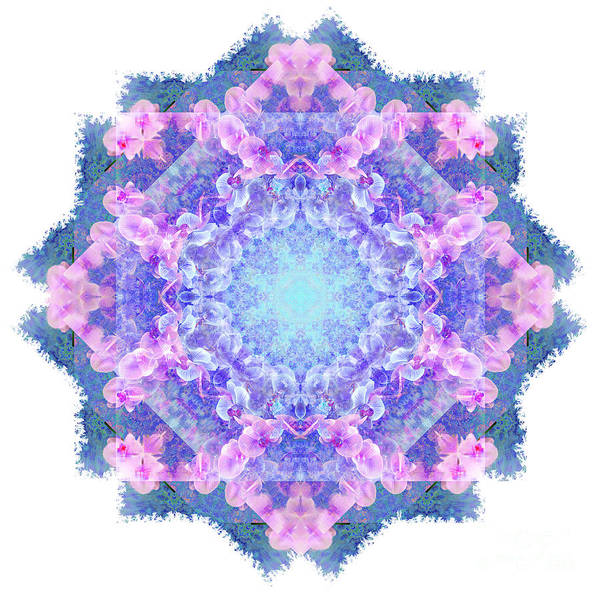 Digital Art - Orchids Mandala by Tracey Everington