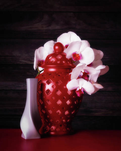 Floral Arrangement Photograph - Orchids With Red And Gray by Tom Mc Nemar