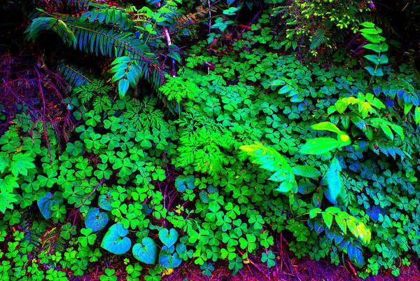 Photograph - Oregon #7 Cosmically Enhanced by Ben Upham III