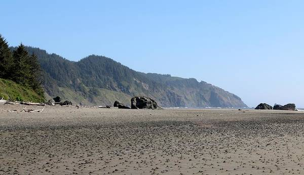 Photograph - Oregon Coast - 10 by Christy Pooschke