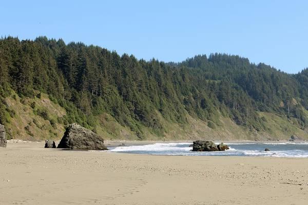 Photograph - Oregon Coast - 17 by Christy Pooschke