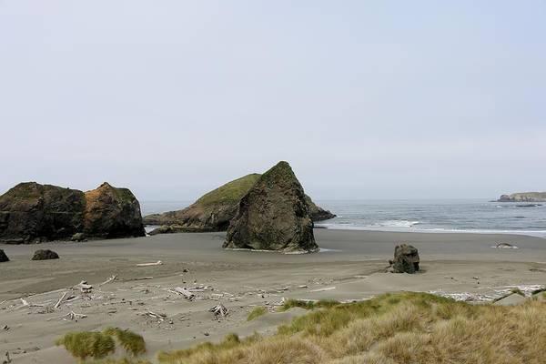 Photograph - Oregon Coast - 25 by Christy Pooschke