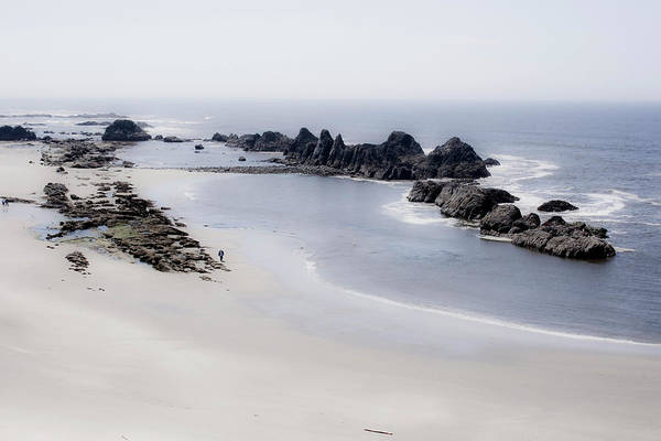 Photograph - Oregon Coast 3 by Lee Santa