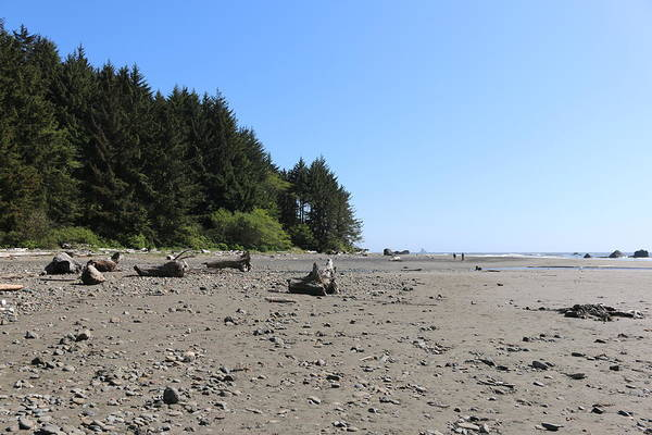 Photograph - Oregon Coast - 4 by Christy Pooschke