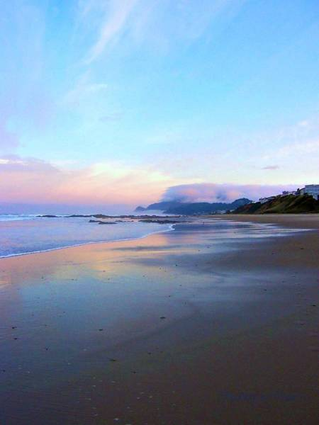 Photograph - Oregon Coast 4 by Deahn      Benware
