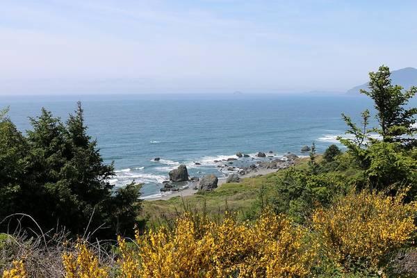 Photograph - Oregon Coast - 40 by Christy Pooschke