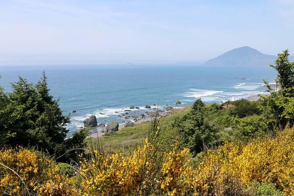 Photograph - Oregon Coast - 41 by Christy Pooschke
