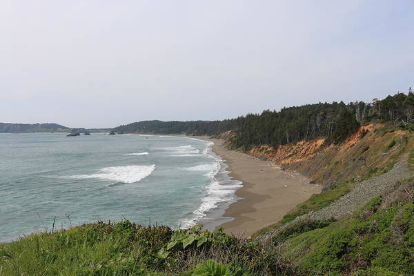 Photograph - Oregon Coast - 48 by Christy Pooschke