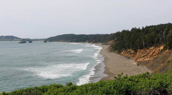 Photograph - Oregon Coast - 49 by Christy Pooschke