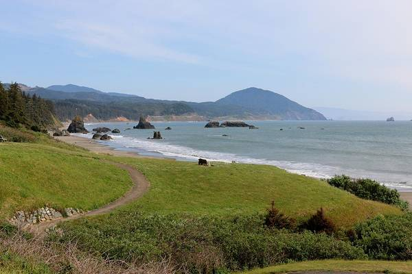 Photograph - Oregon Coast - 52 by Christy Pooschke