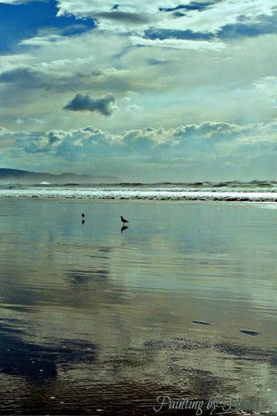 Photograph - Oregon Coast 6 by Deahn      Benware