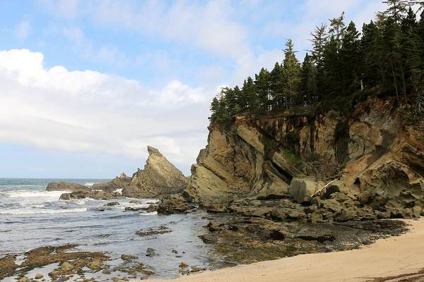 Photograph - Oregon Coast - 82 by Christy Pooschke