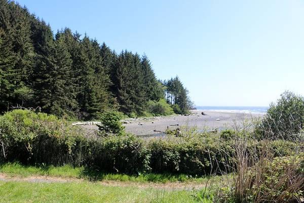 Photograph - Oregon Coast  by Christy Pooschke
