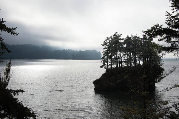 Photograph - Oregon Coast Fog by Lindy Grasser