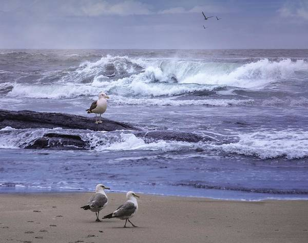 Oregon Coast Digital Art - Oregon Coastal Morning by Diane Schuster