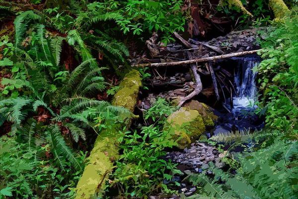 Photograph - Oregon Creek  by Ben Upham III