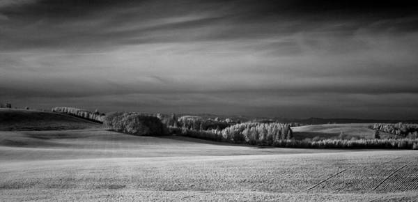 Photograph - Oregon Field In Infrared by Lee Santa