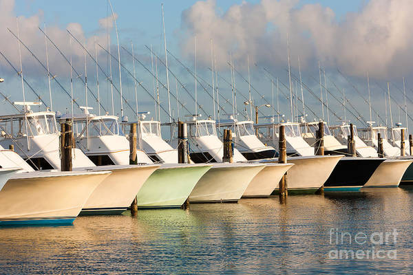 Photograph - Oregon Inlet Fishing Center Fleet I by Clarence Holmes