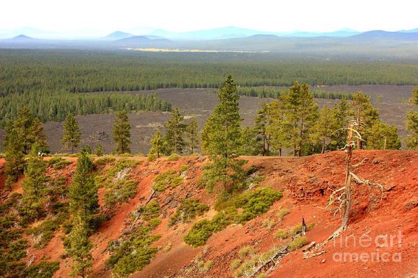 Photograph - Oregon Landscape - View From Lava Butte by Carol Groenen