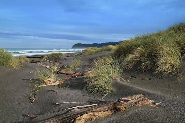 Wall Art - Photograph - Oregon Majestic by Gary Yost