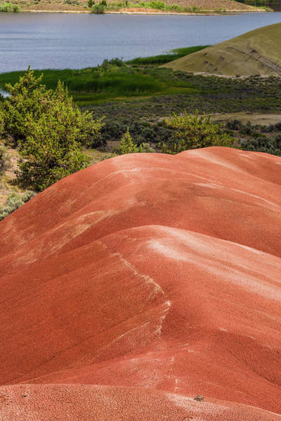 Wall Art - Photograph - Oregon Painted Hills With Painted Hills Reservoir Vertical by John Trax