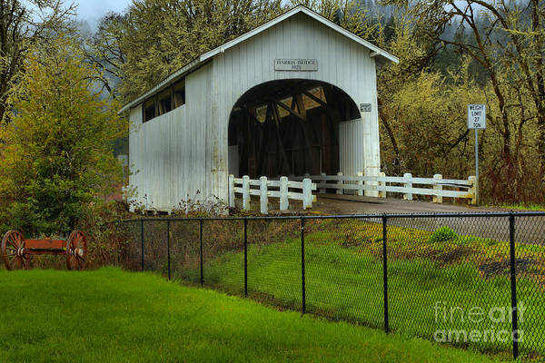 Photograph - Oregon Rainforest Covered Bridge by Adam Jewell