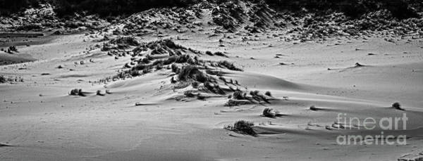 Photograph - Oregon Sand Dunes National Recreation Area by Jon Burch Photography