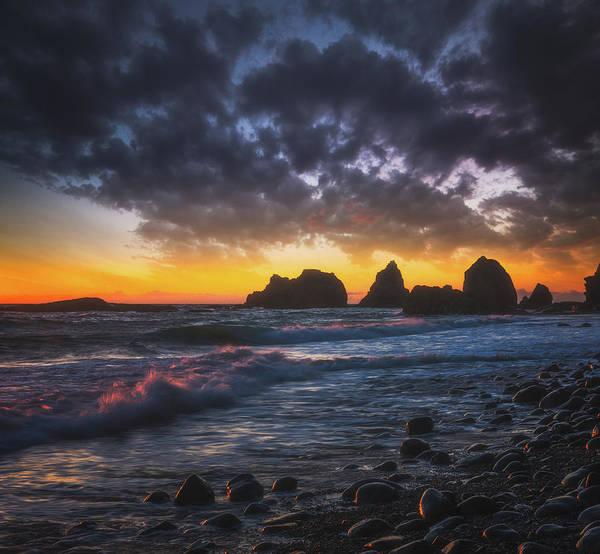 Photograph - Oregon Souls by Darren White