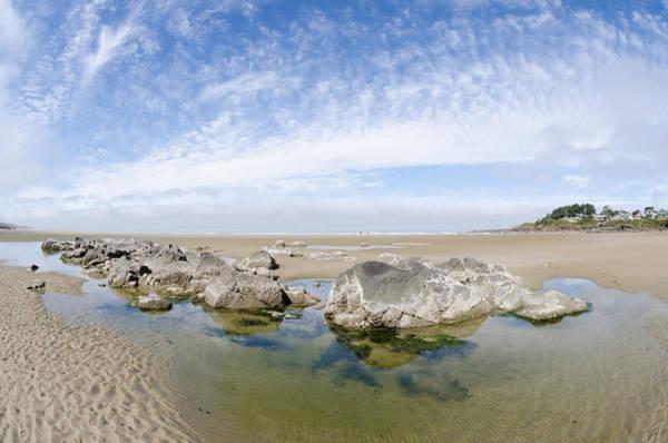 Photograph - Oregon Tide Pool by Margaret Pitcher