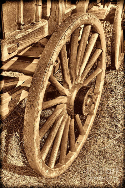 Photograph - Oregon Trail  by American West Legend By Olivier Le Queinec
