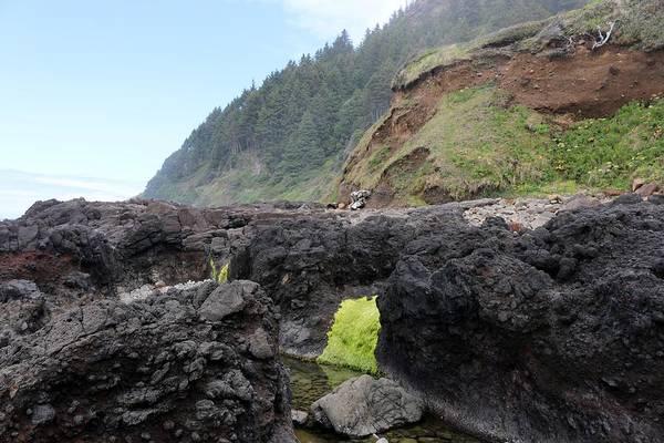 Photograph - Oregon's Rocky Coast  by Christy Pooschke