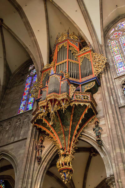 Wall Art - Photograph - Organ At Our Lady Of Strasbourg by Teresa Mucha
