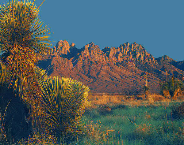 Photograph - 214801-organ Mountains At Sunset  by Ed  Cooper Photography