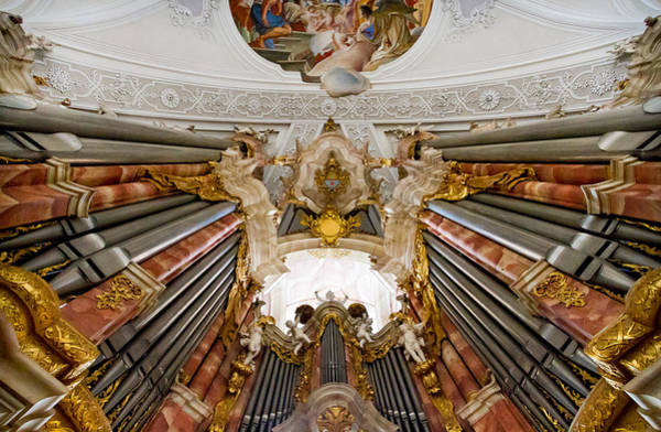 Photograph - Organ Pipes Soaring Above by Jenny Setchell